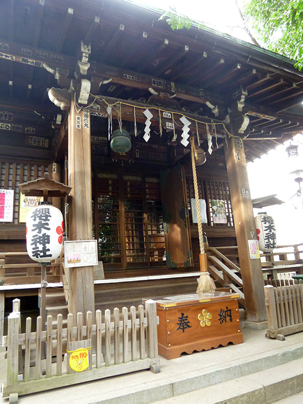 MAIN PHOTO:櫻木神社