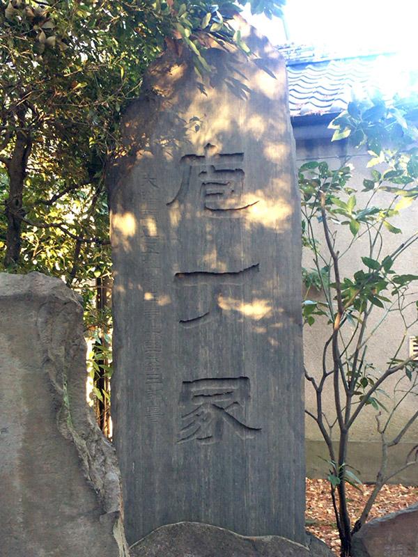 CAT PHOTO:包丁塚