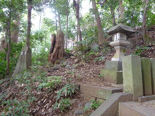 OTHER PHOTO:赤城神社