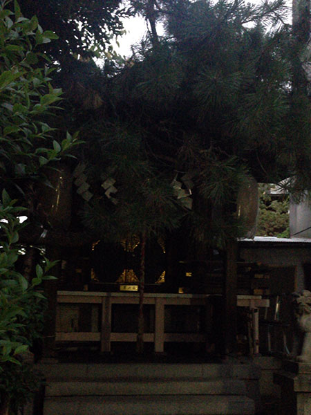 OTHER PHOTO:秋葉神社(青山)