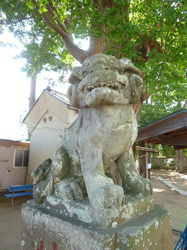 OTHER PHOTO:安房神社(中山)