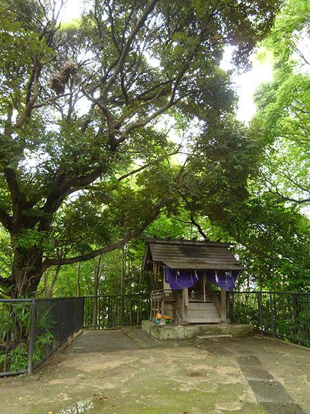 MAIN PHOTO:神明社(亥鼻)