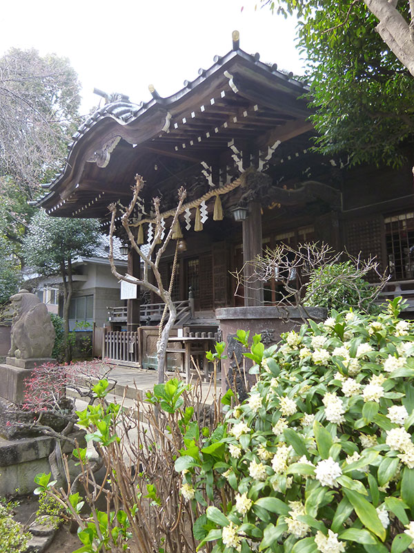 OTHER PHOTO:白山神社
