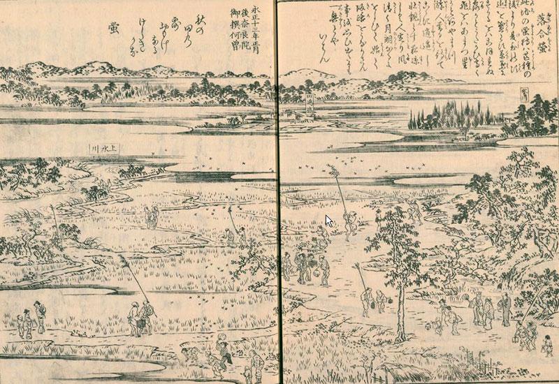 江戸名所図会(落合蛍)