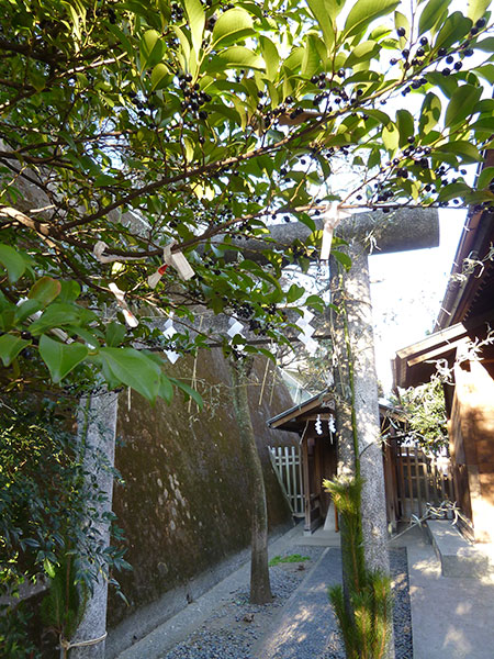OTHER PHOTO:久國神社