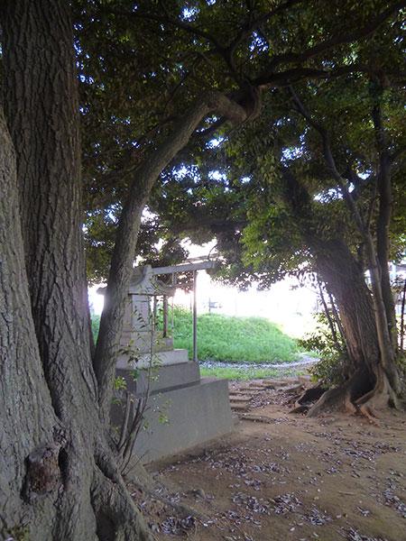 OTHER PHOTO:厳島神社【起木弁天】(村上)