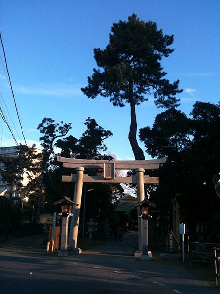 OTHER PHOTO:菊田神社