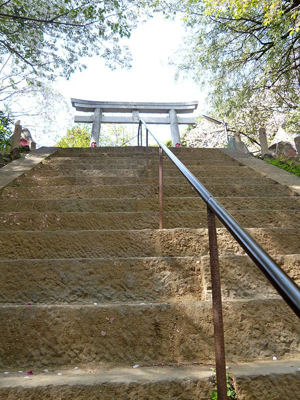OTHER PHOTO:駒込富士神社