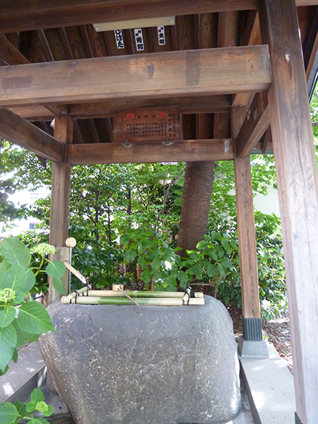 OTHER PHOTO:藏前神社
