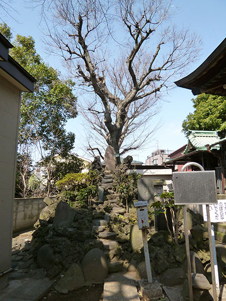 OTHER PHOTO:桑川神社