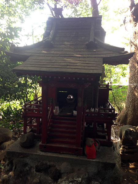 ALTRE FOTO:Santuario di riso