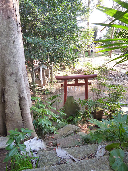 OTHER PHOTO:夏見 日枝神社
