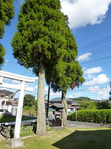 OTHER PHOTO:青龍日吉神社
