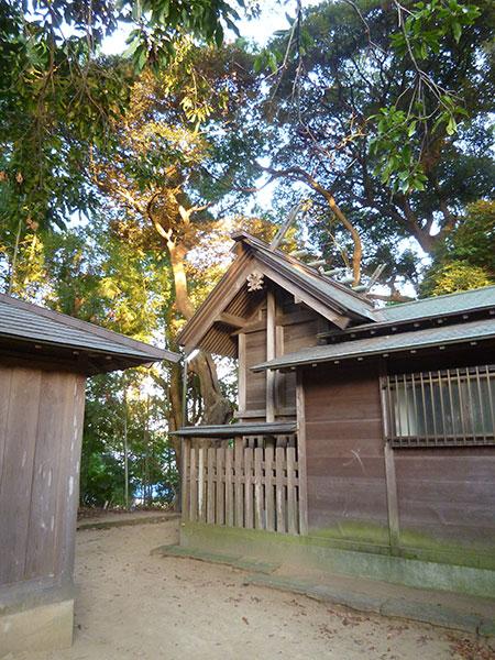 OTHER PHOTO:神明大神社(佐倉)