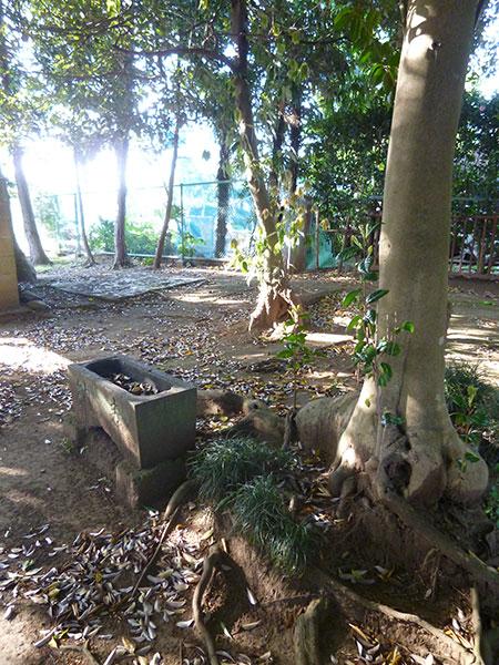 OTHER PHOTO:Tenman-gu Shrine (U.S. Mainland)