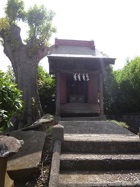 OTHER PHOTO:Wakamiya hachimangu shrine (Chiba-machi)