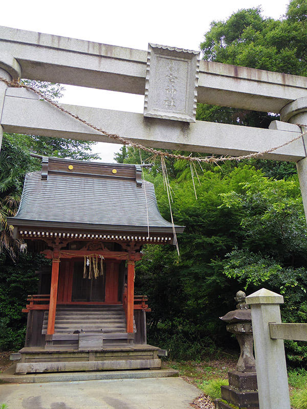 OTHER PHOTO:鷲宮神社(鎌苅)