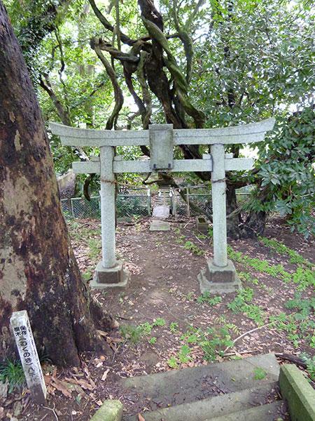 OTHER PHOTO:阿蘇沼片葉葭厳島神社