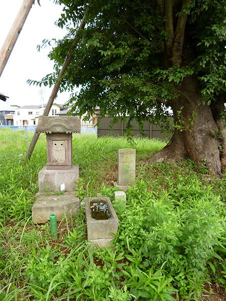 MAIN PHOTO:浅間神社(村上)