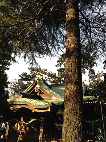 OTHER PHOTO:山野浅間神社