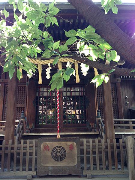 MAIN PHOTO:柳森神社(おたぬき様)