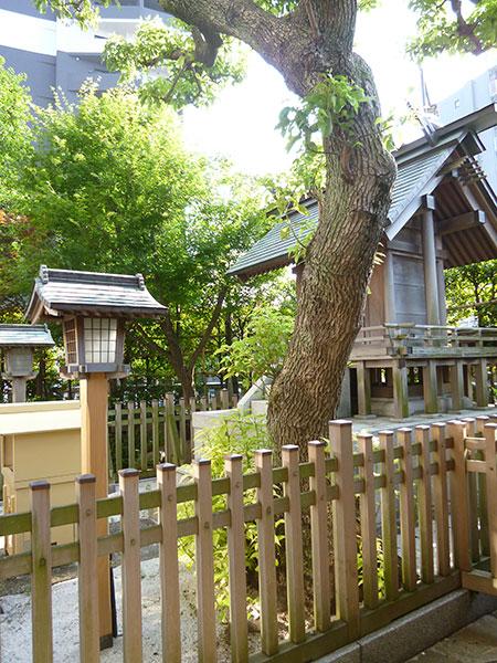 OTHER PHOTO:Itsukushima Shrine-Nuke-Benten